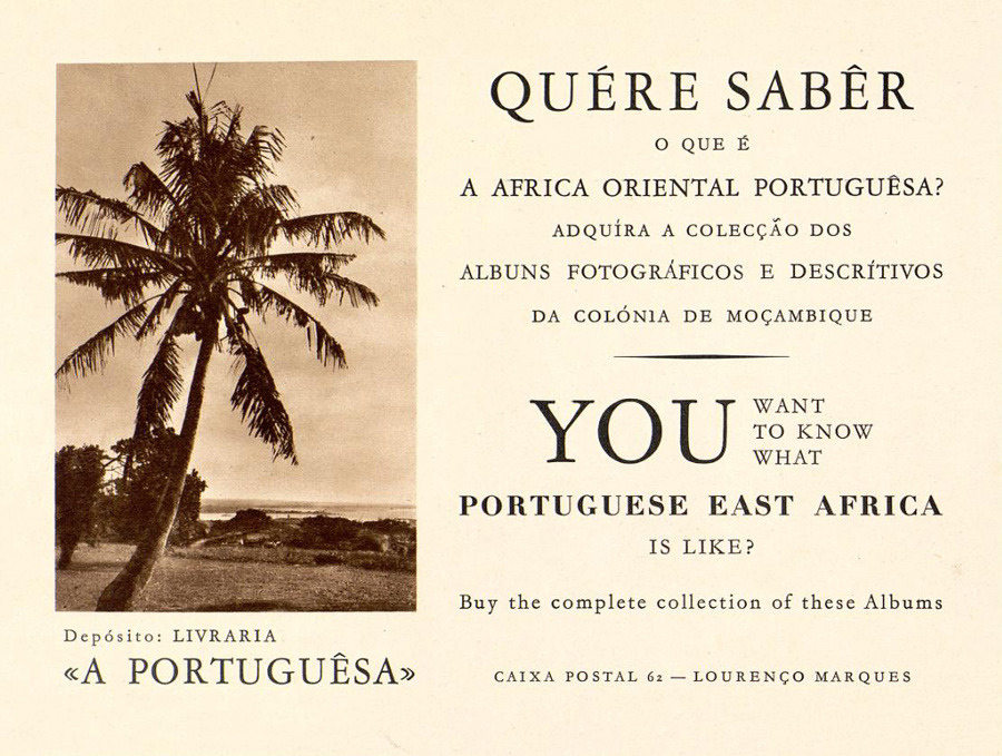 Froth on the Colonial Daydream 50 Watts – Portuguese Birthday Cards